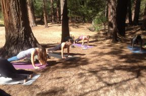 Living the Dream:  Yoga and Hiking in Yosemite