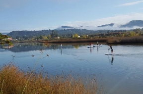 Introduction to Stand Up Paddling on the Napa River